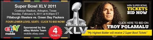 Super Bowl XLV Charity Auction
