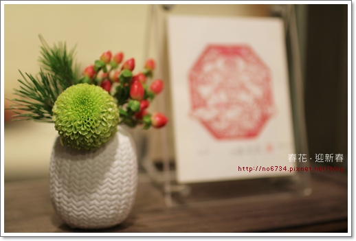 20110129_ChineseNewYear_0046 f