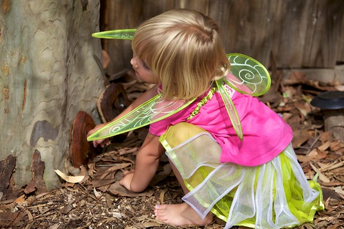 Little fairy checks the fairy door