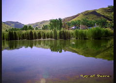 The Kalarkahar Beauty (Ray of Peace) Tags: travel lake travelling nature water beauty canon reflections hope mirror heaven ray peace photographer natural image earth joy scenic peaceful scene serenity lovely punjab pure 70200mm akistan 500d kalarkahar
