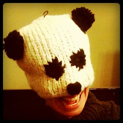 File under: That's not how you're supposed to wear your panda hat