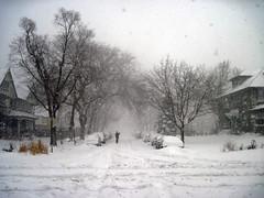 snowy street - blizzard 2011 (renee_mcgurk) Tags: trees houses winter snow chicago cars person illinois snowstorm pedestrian neighborhood intersection snowfall tiretracks rogerspark windstorm reneemcgurk chicagoblizzard2011 greenviewandestes