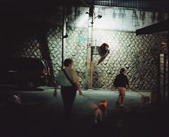 2156/1957 (june1777) Tags: street light dog night alley pentax kodak snap seoul portra 800 67 105mm f24 samcheongdong pentax67