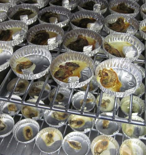 Oyster jerky