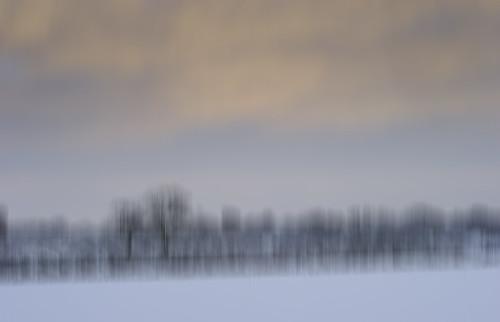 Winters Dawn