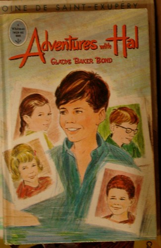 Book Cover: Adventures with Hal