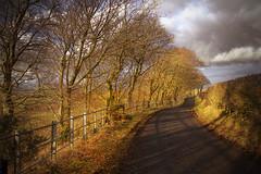 Sunny Dunlop (BoboftheGlen) Tags: road scotland hills dunlop ayrshire boreland gettyimagesuklocation