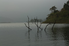 Banasura Sagar lake (Cam_Buff) Tags: lake country kerala gods own greenary wayanadu banasurasagar banasurasagarlakeresortbanasurasagarbanasurasagar wayanadukeralatravelholidaynaturepartyweekend