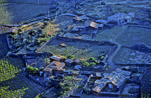 Vineyards and Dammusi, Pantelleria - Copyright by Martin Liebermann