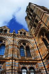 Natural History Museum, London (Claire Fun) Tags: uk blue building london animals architecture clouds dinosaur models vertigo bluesky bones kensington skeletons naturalhistorymuseum oldbuilding 1880 southkensington cromwellroad alfredwaterhouse waterhousebuilding whatsthatthingcalledwhereyoulookupattallbuildingsandfeeladizzy isitasortofreversevertigo