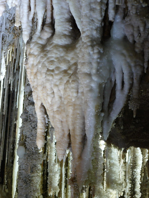 the Clamouse Cave