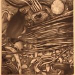 "<b>Shoreline 1</b><br/> Paula Berg Owen (LC '70) (charcoal on paper, 2010)<a href=""http://farm6.static.flickr.com/5055/5492387999_358619e9a1_o.jpg"" title=""High res"">∝</a>"