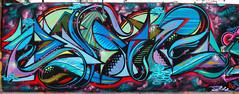 Asie (Asie) Tags: graffiti s stick asie viñadelmar wildstyle zade 2011 fros santaines dresak