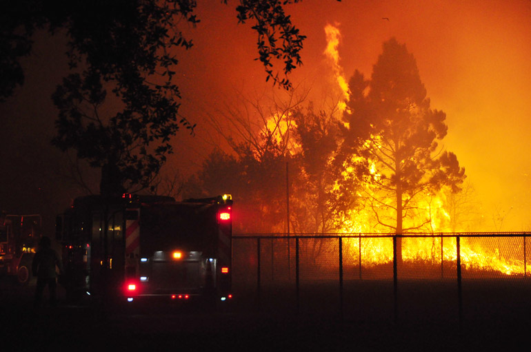 web_florida_wildfire_0179