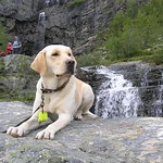 Eevi in waterfalls thumbnail