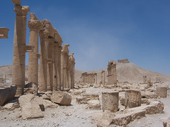 Interior View of Colonnaded Axis at Palmyra (I)