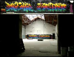 By DELIRZ, METRO (OMT-TER) (Thias (°-°)) Tags: terrain streetart wall painting graffiti mural metro spray urbanart painter graff toulouse aerosol bombing spraycanart ambiance ter pgc thias friche omt photograff delirz frenchgraff photograffcollectif