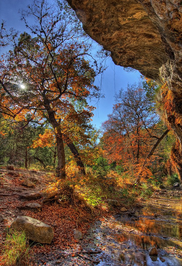 Lost Maples Grotto in the Fall (HDR)