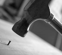 I'd rather be a hammer than a nail... (Southwellski) Tags: hammer nail dailyshoot