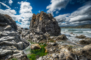 The Jagged Coast - (HDR Wellington, New Zealand)