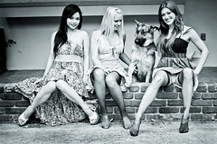 3 girls and a Dog (A.C.Thamer) Tags: bw stockings beauty ginger women legs blond brunette thamerphotography acthamer