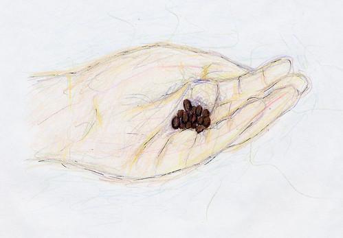seedhand