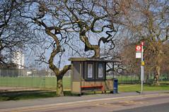Ha Ha Road bus stop (John A King) Tags: bus stop haha woolwichcommon haharoad
