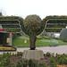 pretty topiary