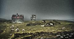 Skinnaln (oskarpall) Tags: house building abandoned iceland sland eyibli melrakkasltta skinnaln