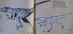 A Field Guide to Dinosaurs, 1983, Pages 62 and 63