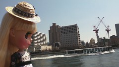 She is watching Sumida river