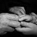 Papa's Hands, 2010, Yvonne (Bonnie) Griffith, photograph, 8 x 10