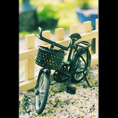 For My April (t L) Tags: birthday bicycle 35mm nikon little sweet thing vietnam april nikkor f18 saigon hcmc d300 sign tphcm tl datphat datphat82