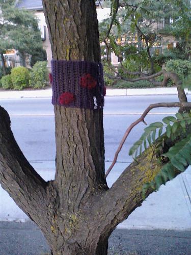 Tree spots