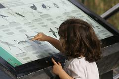 Las generaciones nuevas que aprendan sobre nuestro entorno, flora y fauna, para que la conozcan, amen y respeten