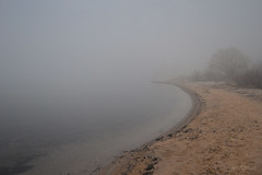 Endless Fog (jess_clifton) Tags: fog vanishingpoint sand shoreline lakemichigan infinite nohorizon westendbeach