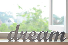 Dream ( indecisive) Tags: wood glitter paint pretty dream