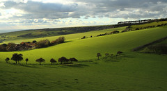 """Green Fields of Sussex (Susan SRS) Tags: uk england green canon landscape sussex coast farmland gb fields sevensisters eastsussex img7813 """"flickraward"""""""