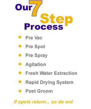 Carpet Cleaning 7 step Process - H2O911 Orlando
