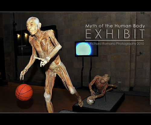Myth of the Human Body Exhibit 3