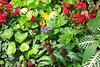Floral arrangement 012 (Bosc d'Anjou) Tags: floral newjersey somerville botanicalgarden dukegardens hillsborough dorisduke