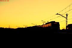 Al caer el sol... (Indespe) Tags: sol tren trenes railway cercanas puestadesol renfe unidad elctrico ffcc clido 447