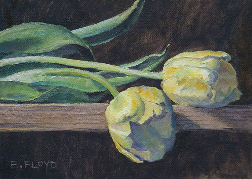 20110204 yellow tulips on a shelf 5x7