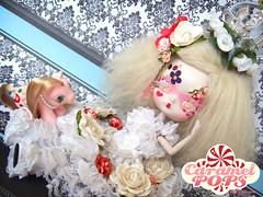 Erylyn the Deranged Bridesmaid & pet Mus ( Caramelaw ) Tags: baby dolls sale alice dal pony pullip mad custom wonderland adoption hatter hattress pollip caramelaw