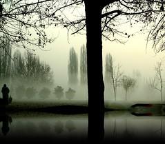 ...il bosco che non c' (*BLULU) Tags: torino sofia dream piazza bruma illusione naturepoetry shotincar neppureillago nessunkrakenuscirdaquestolago