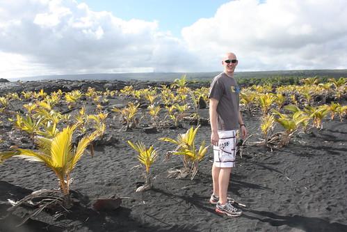 Hawaii2 2011 292