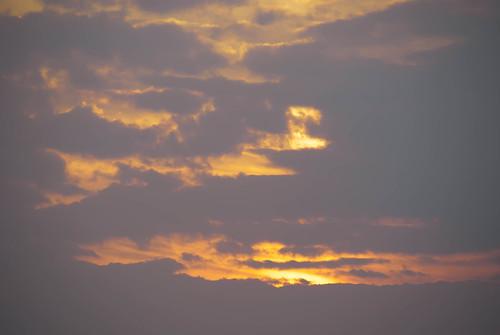 20110216-FebFlorida2011-16-5.jpg