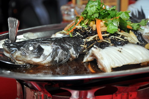 Hing Fatt Steamed Patin with Superior Sauce