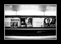 PARIS FEVRIER 2011-8438 (David Bascunana) Tags: paris cadenas palaisdejustice metro crane louvre pigeon alma pigeons coeur os muse notredame pont metropolitain arcdetriomphe sdf panam escalier greve gargouille mairie parvis pontneuf manifestation ilestlouis rer clochard chatelet catacombes bateaumouche marceau pontdesarts tapisroulant clodo paname ossements procs sansdomicile champslyse sansdomicilefixe outreau contrepoint ilesaintlouisiledelacit