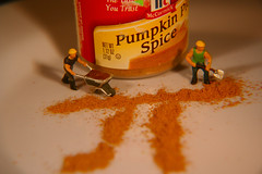 Pumpkin π (katerha) Tags: pumpkin spice pumpkinpie figures seasoning tinypeople π pumpkinpi pumpkinpiespice macromondays pumpkinπ